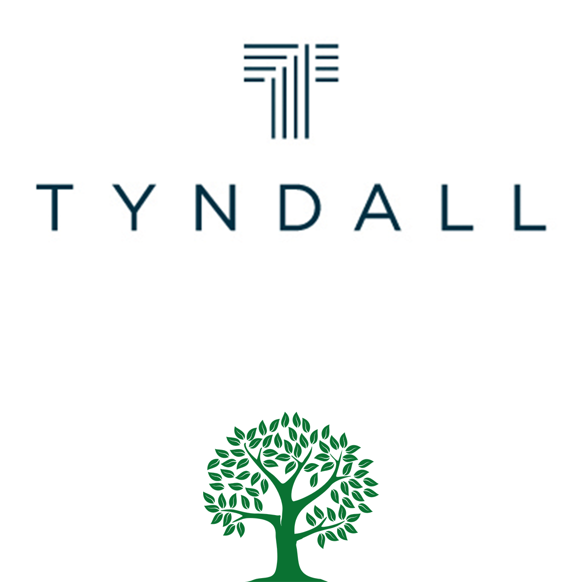 Tyndall Investment Management