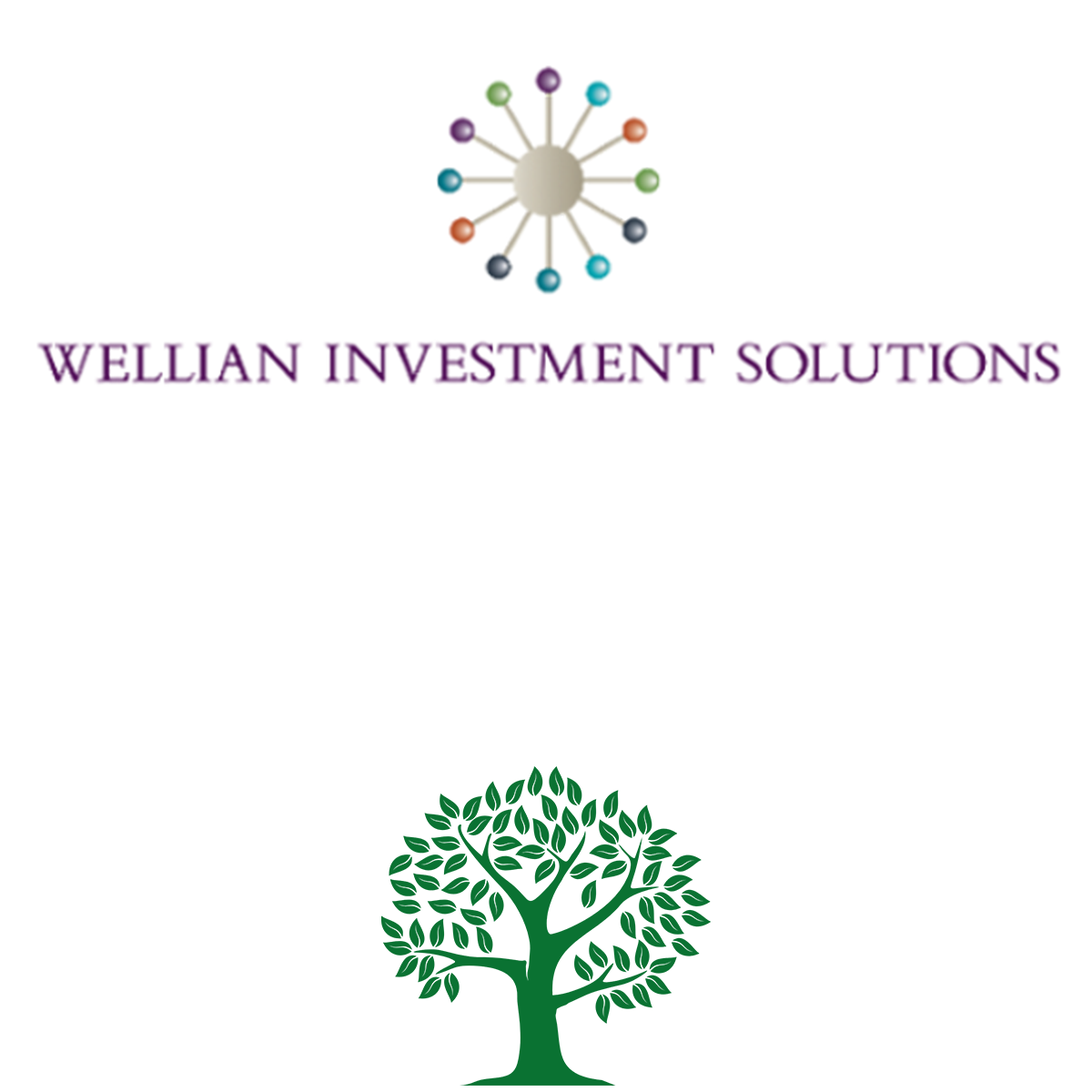 Wellian Investment Solutions