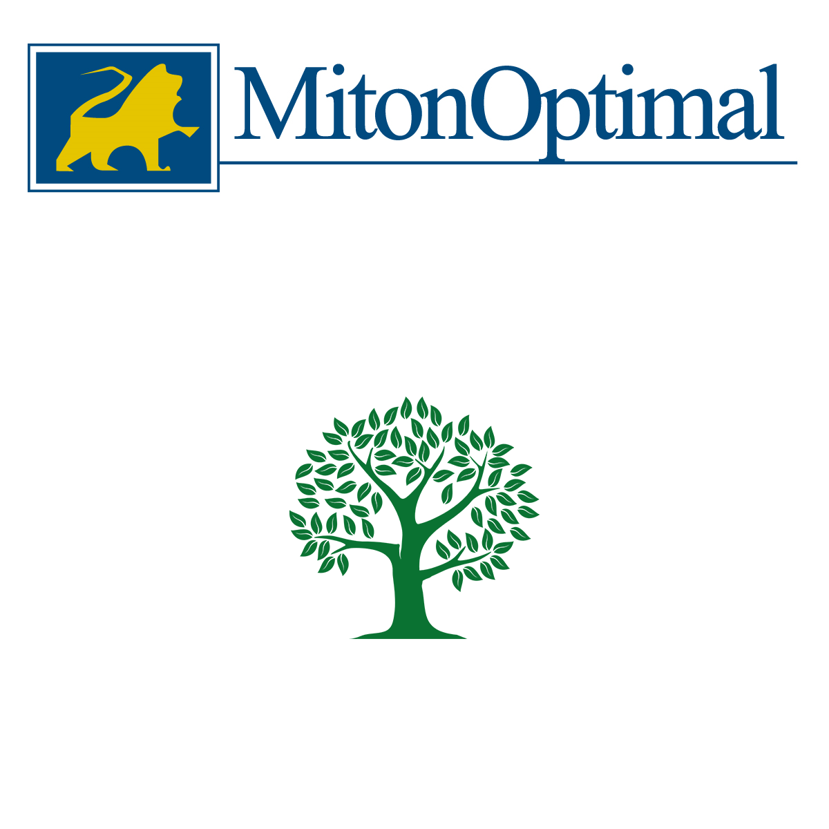 MitonOptimal UK Limited
