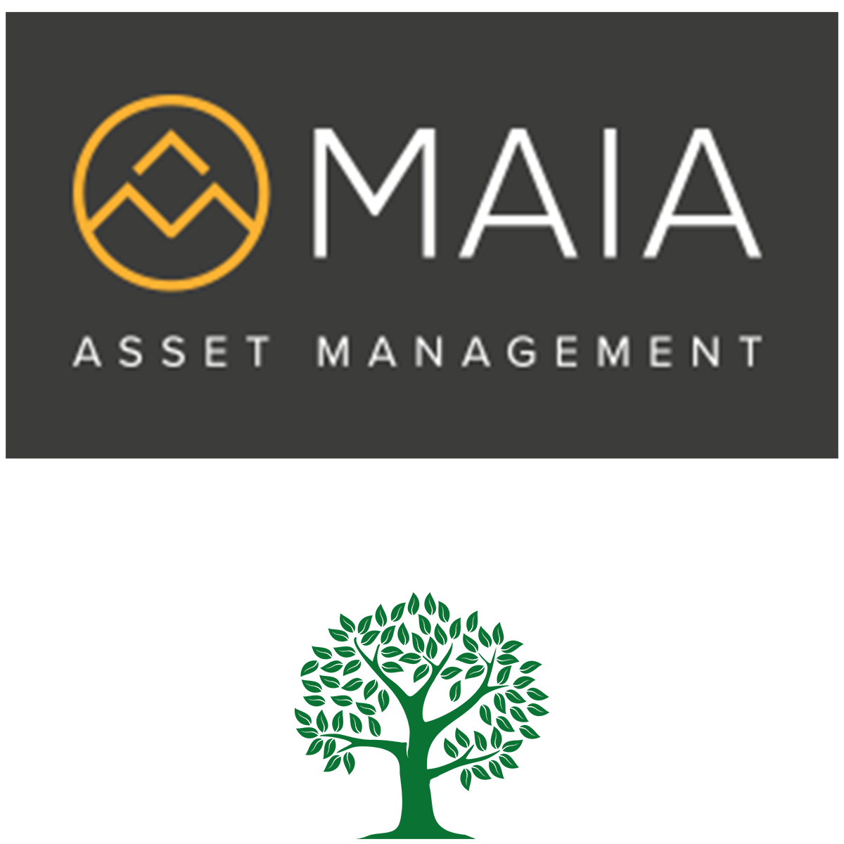 MAIA Asset Management